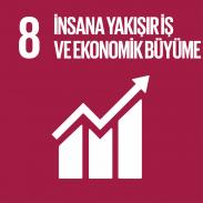 8. İnsana Yakışır İş ve Ekonomik Büyüme